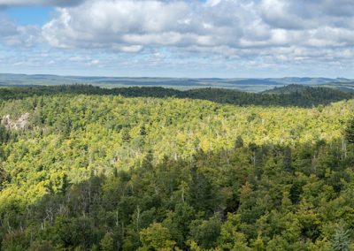 Superior National Forest Panorama - Photo Credit Zach Pierce