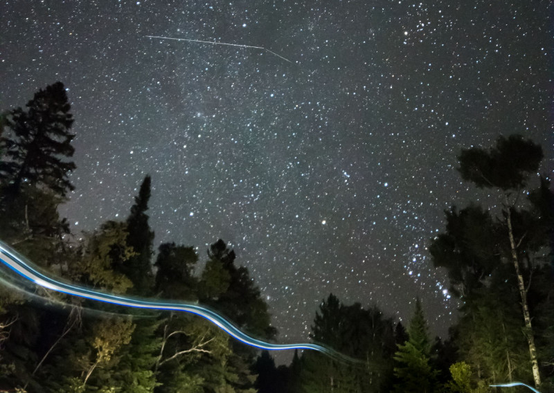 The Boreal Night Sky - Photo Credit Kelly Doyle