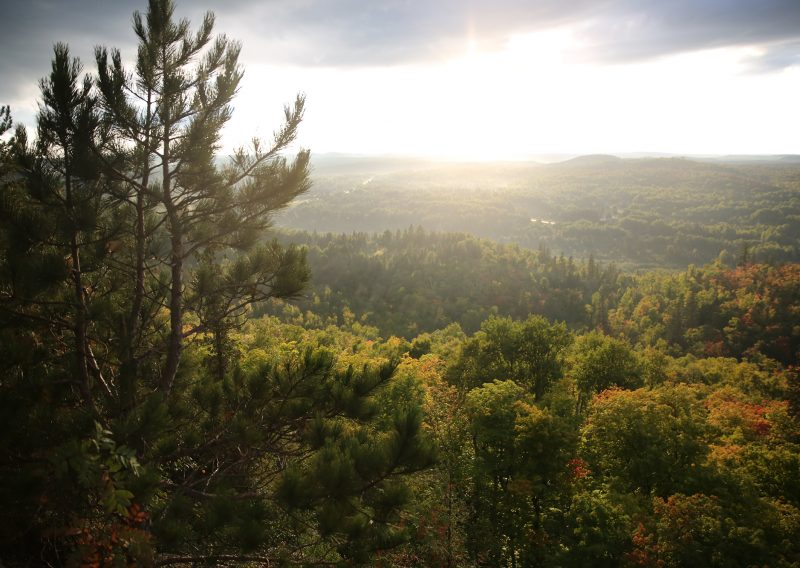 View From Sawmill Dome - Photo Credit Cary Johnson